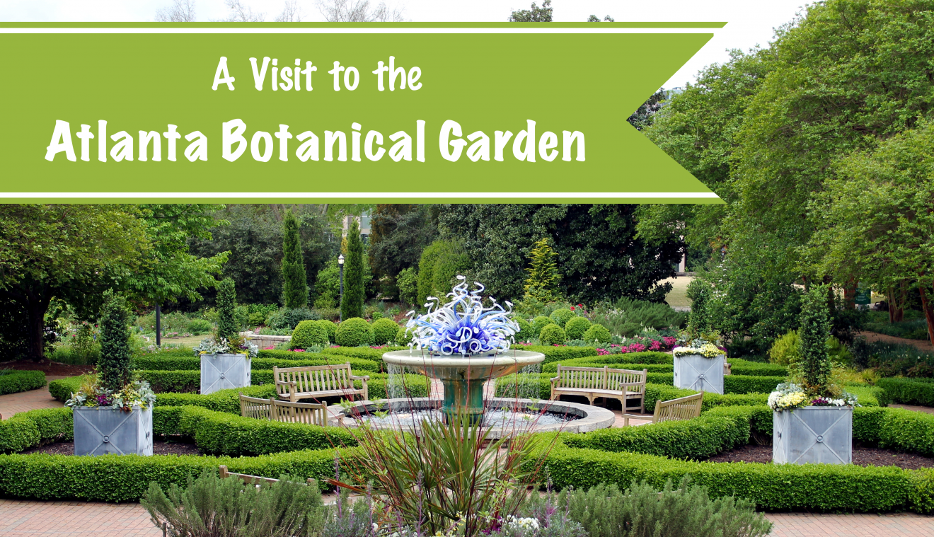 A Visit To The Atlanta Botanical Garden Footsteps Of A Dreamer